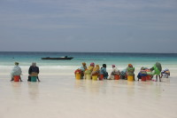 Zanzibar Island - women waiting for fishermen on the seashore