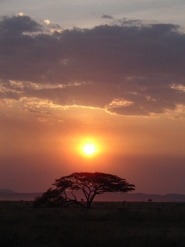 Sunset over the Serengeti plains - Tanzania