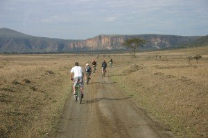 Kenya Safari Tours & Holiday Packages